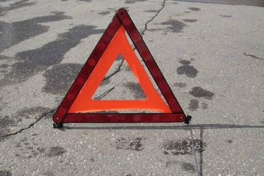 ВНижегородской области «Уазик» въехал втолпу пешеходов